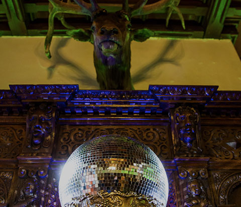 the main hall with stag head and glitter ball